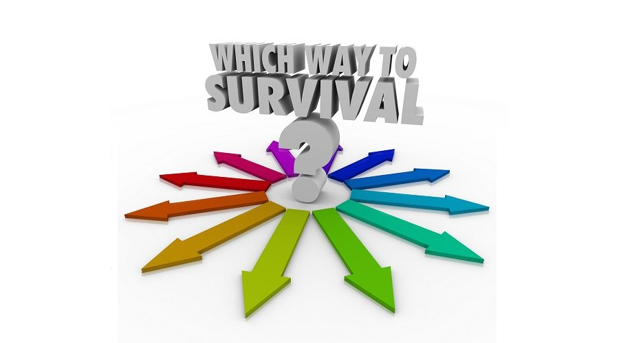 Which Way to Survival? Question Arrows Pointing Way